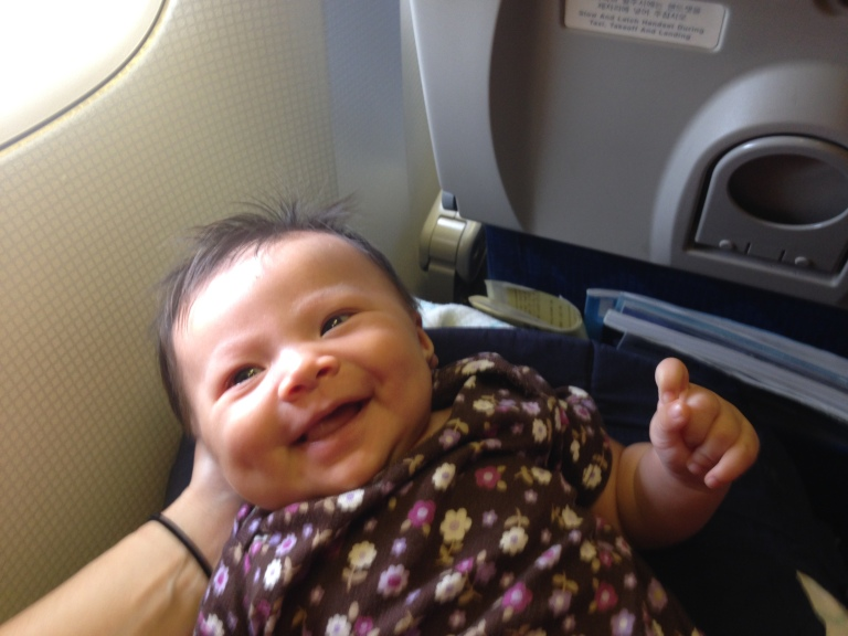 Flying home. Happy traveler.