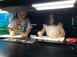 Making art to project onto a screen at the art/science museum